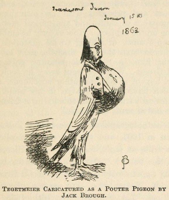 Tegetmeier as a pigeon