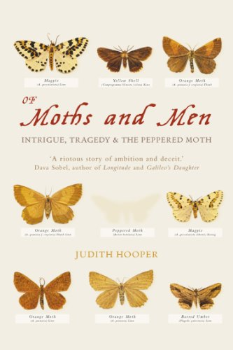 Of Moths & Men