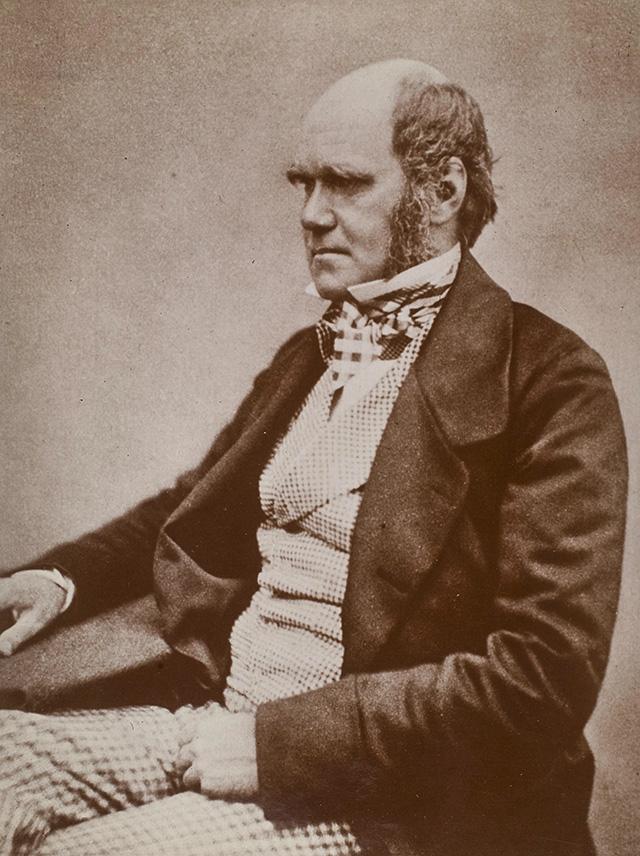 Darwin c.1854
