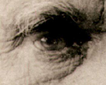 Darwin's eye