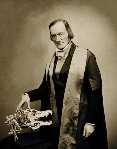 Richard Owen, 1856